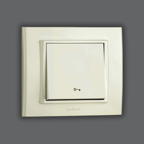 CONTROL SWITCH DOOR - WHITE