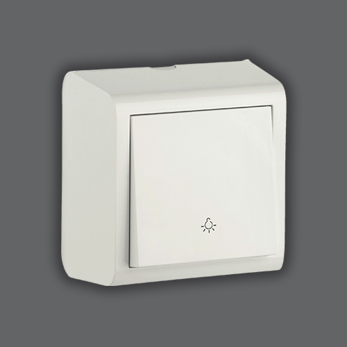 CONTROL SWITCH LIGHT - WHITE